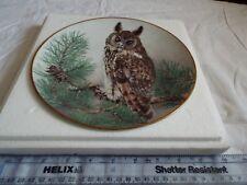 FRANKLIN LONG-EARED OWL (702)
