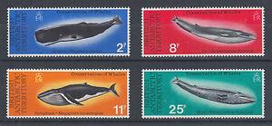 British Antarctic Territory Sc 64-67 MNH. 1977 Whale Conservation, cplt set, VF.