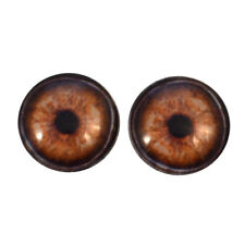 30mm Glass Eyes Brown Elephant Animal Taxidermy Art Doll Sculpture Craft Supply