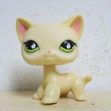 Littlest Pet Shop Animals LPS Yellow & Cream Short Hair Kitty Cat # 733 Rare D1