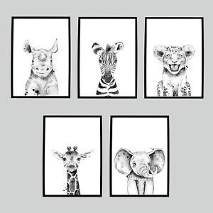 Safari Jungle Animal Girls & Boys Bedroom Word/ Wall Art Picture Prints Nursery