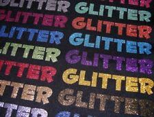 Siser Glitter Holographic Electric HTV Vinyl 5 Pounds Grab Bag of Scraps Box