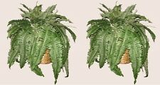 2 BOSTON FERN SILK BUSH PLANT ARTIFICIAL IN BASKET ARRANGEMENT PALM TREE FLOWER