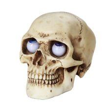 Skull with Rolling Eyes Figurine Statue Skeleton