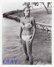 ! Ursula Andress busty leggy RARE Photo Dr. No James Bond