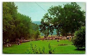 1950s/60s 4th of July, Tiadaghton Elm, PA Postcard *6V(4)39