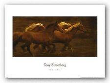 HORSE ART PRINT Tribe by Tony Stromberg