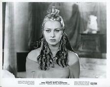 SOPHIA LOREN TWO NIGHTS WITH CLEOPATRA 1954 VINTAGE PHOTO ORIGINAL #6