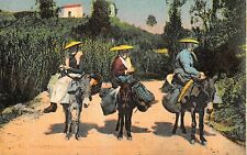 Br71571 types corses donkey costumes folklore france
