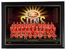 Gold Coast Suns 2017 AFL OFFICIAL Team Print Framed Gary Ablett Jnr. Tom Lynch