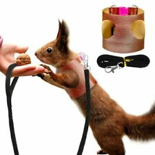 Small Pets Harness Leash Rabbit Ferret Hamster Leash Squirrel Pet Accessories