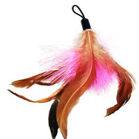 5x Pet Feather REFILLS for Bird feather wand cat toys Interactive Creative Toy