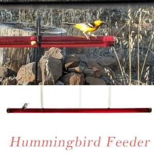 Anna's Best Hummingbird Feeder 24/48 oz with Hole Birds Feeding Pipes Easy  Use