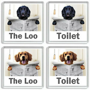 WORKING COCKER SPANIEL READING A NEWSPAPER ON THE LOO Novelty Toilet Door Signs