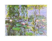 Claude Monet Seerosen Ausschnitt Poster Kunstdruck Bild 50x40cm