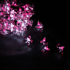 Pink/White Moonflower - 50 LED Indoor String Lights - Mains Powered