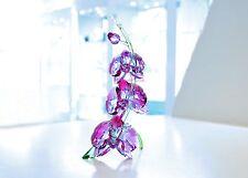 Swarovski Orchids Beautiful Fuchsia Flower Gift For Mom 5243561 Brand New In Box