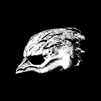Legend Of The Seagullmen - Legend Of The Seagullmen [CD]