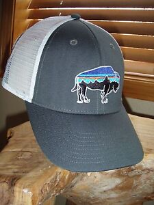 Patagonia Fitz Roy Bison LoPro Trucker Hat Forge Grey