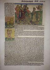 "Koloriertes Blatt ""VERSEHGANG"" aus der Schedel Weltchronik 1493, Albrecht Dürer"