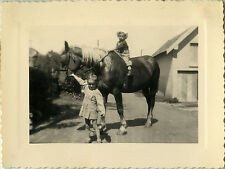 PHOTO ANCIENNE - VINTAGE SNAPSHOT - ANIMAL CHEVAL DE TRAIT ENFANT DRÔLE - HORSE