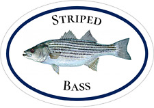 Bass Decal - Striped Bass Fishing Vinyl Sticker - Fishing Bumper Sticker