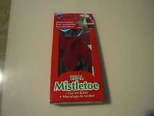 New ! Christmas Real Mistletoe Dried One Bunch  New Years Holiday Party Decor