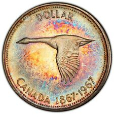 1967 CANADA GOOSE SILVER DOLLAR PCGS PL65 COLOR MONSTER RAINBOW TONED UNC (DR)