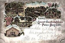 14897/ Litho AK, Gruss aus dem Concert-Gesellschaftshaus Peters-Burg, Celle,1898