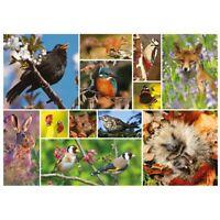1000 piece RSPB Jigsaw Puzzle | BRITISH WILDLIFE | Wild Animal Jigsaw Brand New