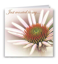 Just Wanted To Say... Greeting Card - Daisy