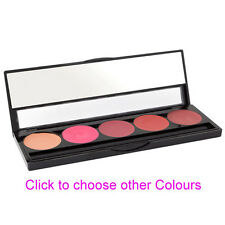 Professional Lipstick Palette with 5 Colour, by Masquerade