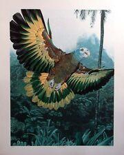 "Dallas John ""St. Vincent Amazon"" Toropical Bird HAND SIGNED FINE ART MAKE OFFER!"