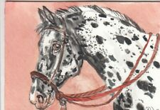ACEO original Watercolor Art Card Horse Loud LOUD spotted appaloosa in Bosal