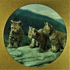 Three Of A Kind Plate Small Wonders of the Wild Charles Frace Big Cat Baby Cats