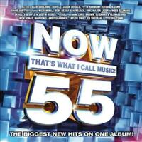 VARIOUS ARTISTS - NOW THAT'S WHAT I CALL MUSIC! 55 NEW CD