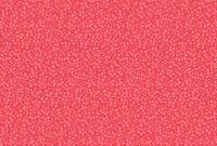 Lecien memoire a paris Quilting Cotton water rmelon pink 82081830 fabric