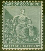 Cape of Good Hope 1882 1/2d Grey-Black SG40a Good Mtd Mint
