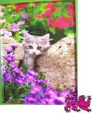 Jigsaw puzzle Animal Cat Peek A Boo 500 piece NEW