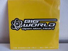 CD SINGLE BIG WORLD Open your heart PROMO