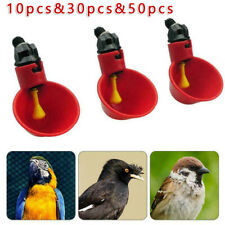 Pigeon Water Feeders Quail 10/30/50pcs Drinking Cup Plastic Practical Ideal