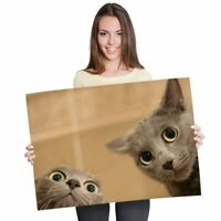 Cute Funny Cats Poster Print Size A4 A3 Pet Kitten Animals Poster Gift #12186