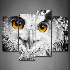 Framed Owl Head Portrait Canvas Print Wall Art Painting Wild Animal Picture