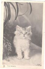 VINTAGE POSTCARD KITTENS CAT THE SERAPH ANIMALS TUCK RP