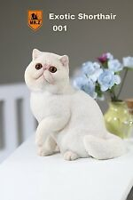 Mr.Z 1/6 Real Animal Series No.8 Exotic Shorthair Cat Garfield Statue 001