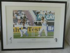 More details for sir ian botham 1981 ashes series signed ltd edtn framed/mount 825 x 625 with coa