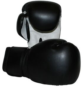Boxing Gloves New, Fast Shipping.