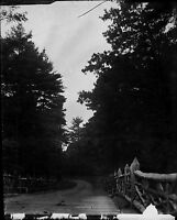 Antique 4x5 Glass Plate Negative Wooden Bridge & Country Road (V4384)