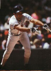 Marty Barrett--Boston Red Sox--Glossy 5x7 Color Photo