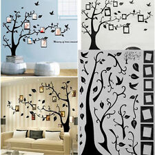 Large Family Tree Birds Photo Frame Quotes Wall Stickers Art Decals Home Decor